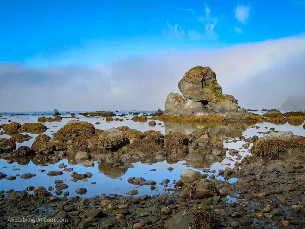 Rugged rocks along the coastline on the Ozette Triangle Loop Trail