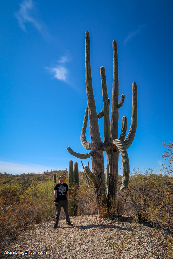 Daniel stands next to a giant Saguaro