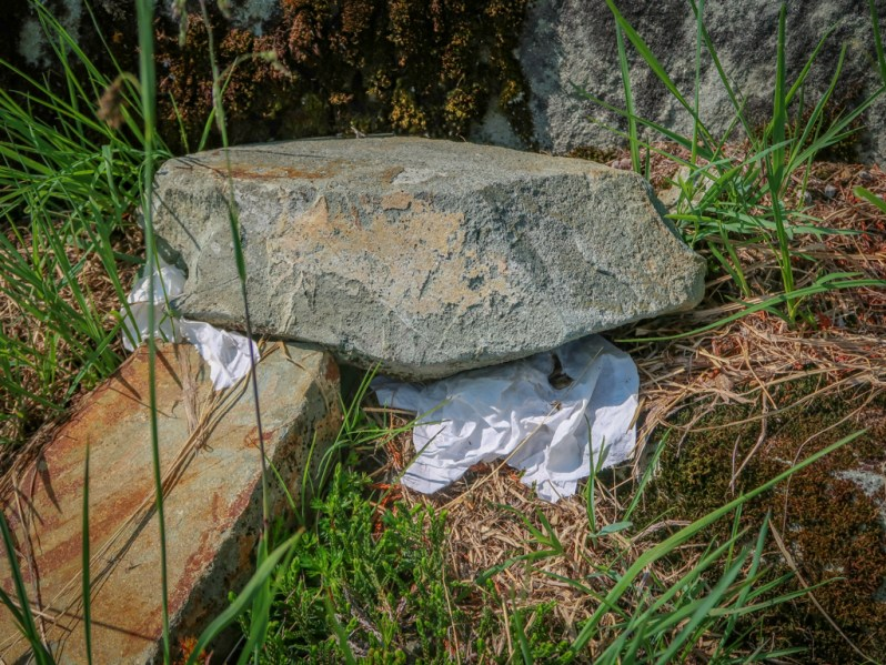 A rock with some toilet paper not very cleverly hidden under it. This is the wrong way to pee outdoors.