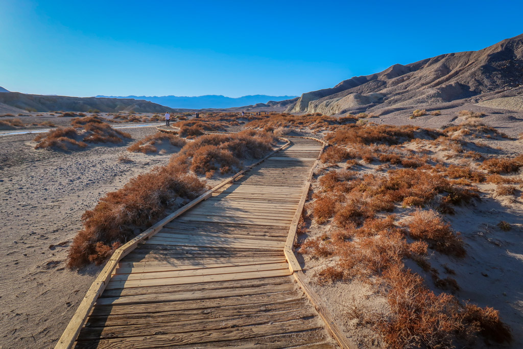 A boardwalk stretches through the desert to provide access to Salt Creek.