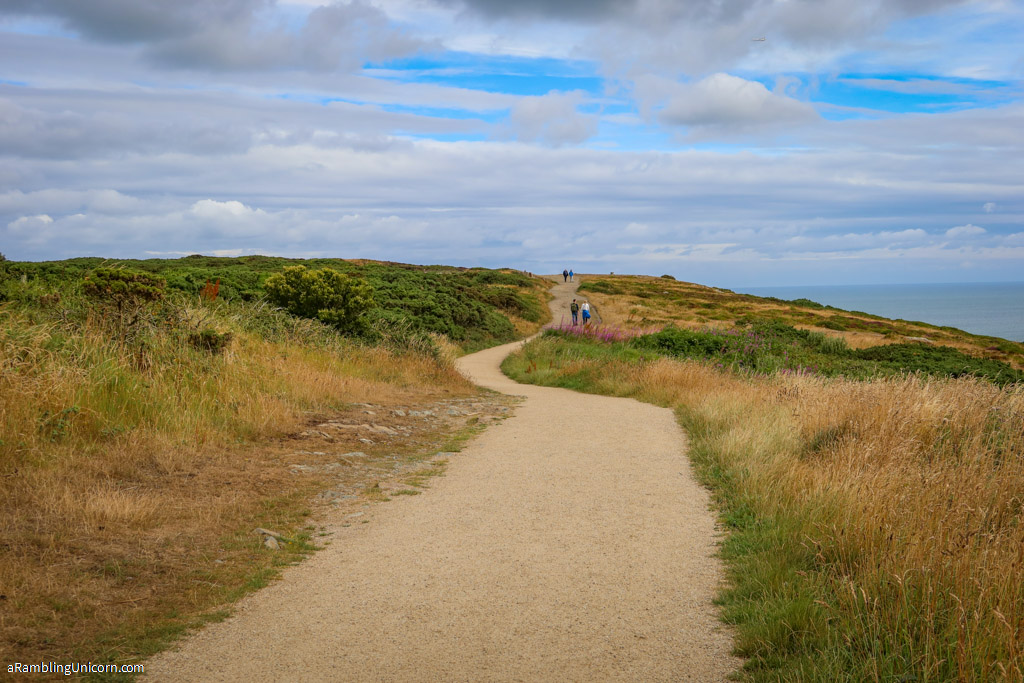 The Upper Cliff Path on the Howth Cliff Walk winds through the heather high on the Howth Headlands under a blue sky