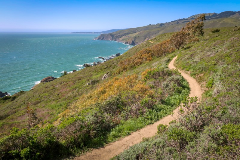 A path along the headlands of the Northern California Coast