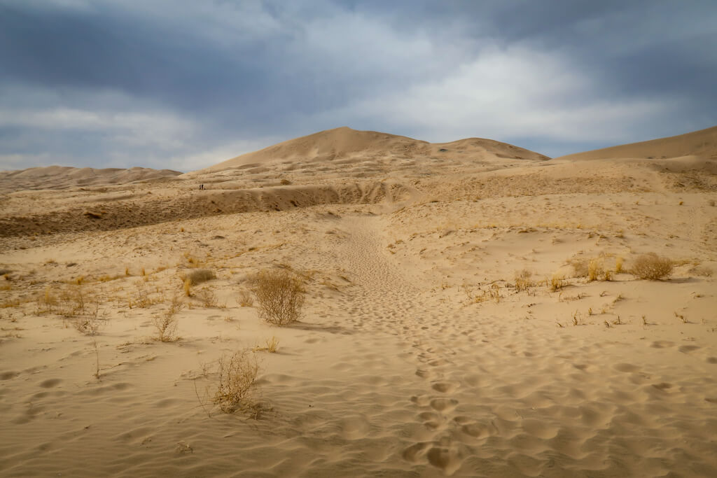 Kelso Dunes Trail with the Dunes in the background
