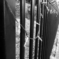 Lightly Fenced.