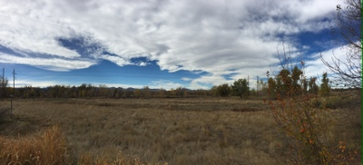 Nature beckons for all seasons at nearby South Platte Park and Carson Nature Center