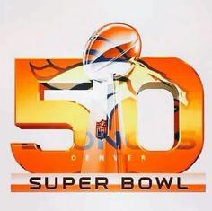 The Denver Broncos are the 2015 Super Bowl Champions