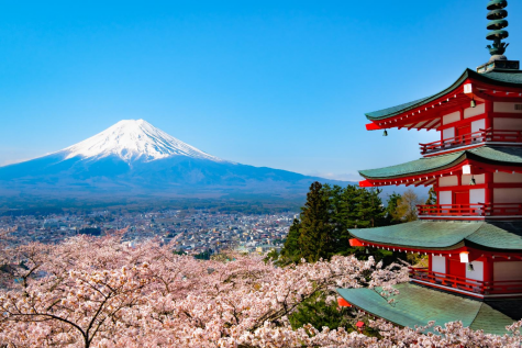 Study Abroad: ACC Students Visit Japan