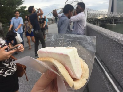 sd1-ice-cream-sandwich
