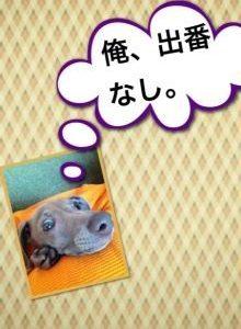 イタグレbuono!のトイレ事情①(出会う前)始まりはいつも突然に!!