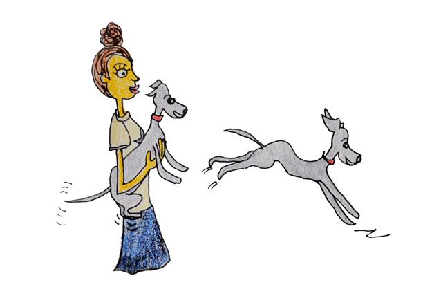 シチュエーション別の正しい犬の抱き方|犬の育て方