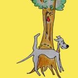 犬の習性を知る|犬と暮らす前に知ってくと困らない11の習性【犬のしつけ・犬の育て方 vol.4】