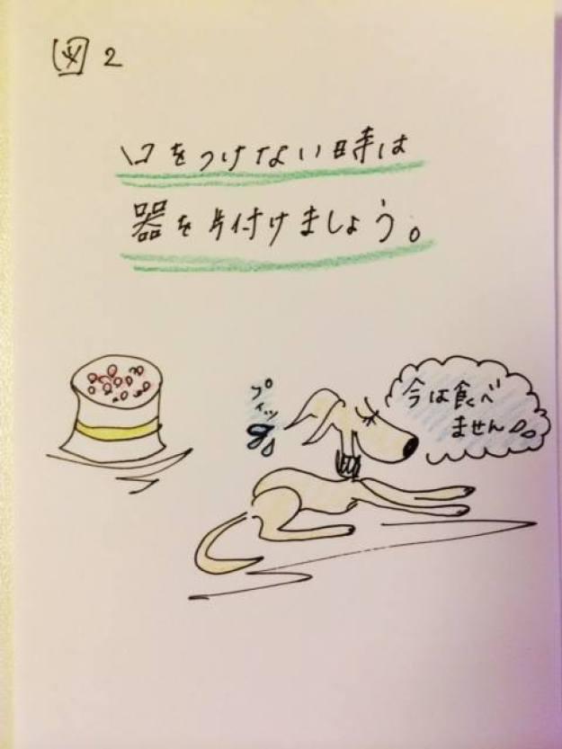 食事のあげ方【犬のしつけ・犬の育て方 vol.13】