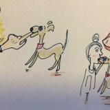 しつけ|咬む・かじる【犬の育て方 vol.29】