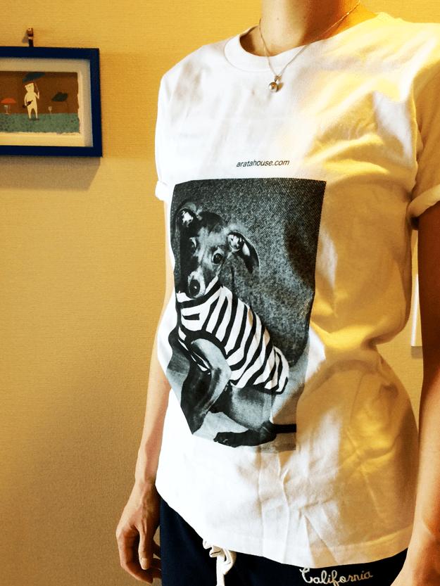 イタグレTシャツを着てみた!