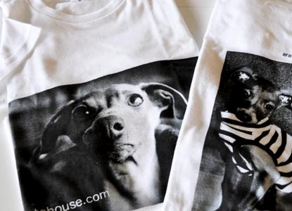 イタグレTシャツを作ってみた!