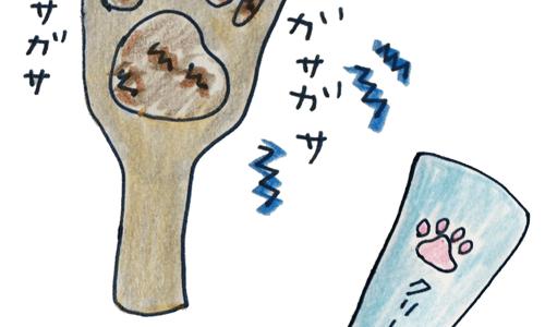 犬のグルーミング|各パーツのお手入れ・肉球【犬のしつけ・犬の育て方 vol.58】