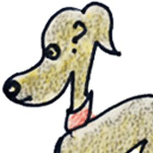 症状から解る犬の病気|便が出ない【犬のしつけ・犬の育て方 vol.63】