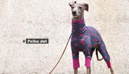 2017.秋の新作|6月から秋冬服を発表する理由と、小さなこだわりと、正解がない色|水玉模様のジャガードニット