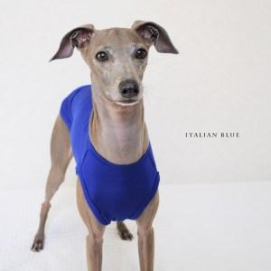 犬服 Italian Blue イタリア製ストレッチ天竺ニット 選べる4タイプ
