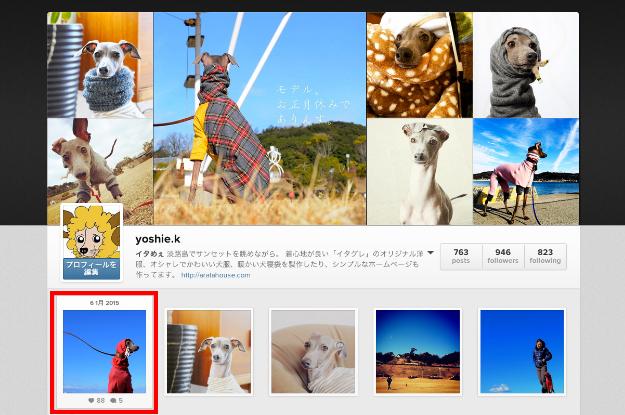 2014年12月に撮った写真の人気ベスト5を調べてみた!by Instagram インスタの写真をブログに掲載する方法