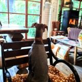 「淡路島カフェ」ラウーベの薪ストーブでホッカホッか|愛犬も一緒に入店できます