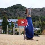 イタグレBuono!「至福のひととき」孤独の時間を大切にする。by YouTube