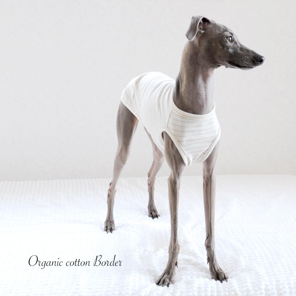 """「大好きな犬服」愛犬と環境にやさしいお洋服「オーガニックコットン」着れば着るほどに好きになる! """"動画も見れます"""""""