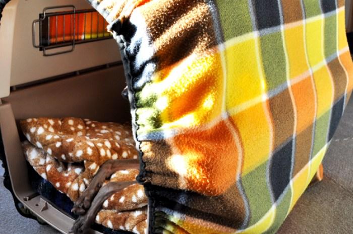 クレート(バリケンネル)と寝袋を使った犬の寝床:保温・保湿効果抜群で冬も快適 クレートカバー バリケンネルカバーの使い方