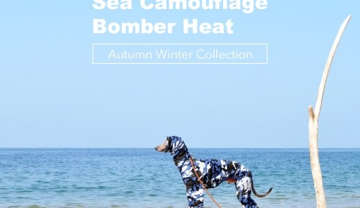 Sea Camouflage:みんなのコーデ|ミニピン、イタグレ、ウィペット