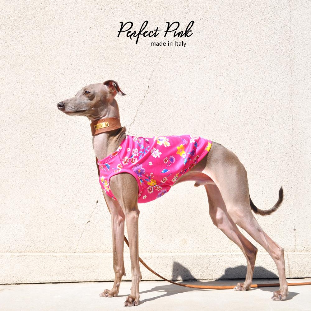鮮やかなピンク。ポップで可愛いいお花柄のお洋服、それが「Perfect Pink」|ハーフタイプも始まりました。