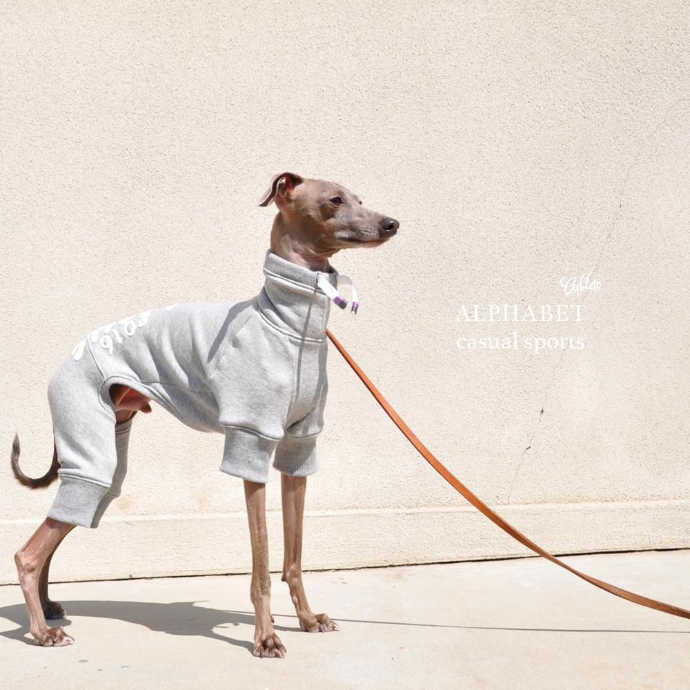 犬服|Alphabet casual sports Athlete|選べる4タイプ×3カラー(Grey/Red/Navy)
