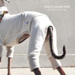 私と最愛の犬の暮らしの中にある服 ARATA HOUSE PURE