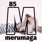 【ショップ会員限定】イタグレBuono!は「癲癇(てんかん)」なの?愛犬が病気、怪我をした時に心がけているたった1つの大切なこと【ARATA HOUSEメルマガ Vol.85】2016/9/23発行