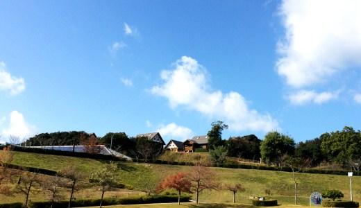 天気がいいので、妻と愛犬を連れて淡路島の広い芝へ。5kmは走った。