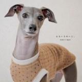 2016年最後の新作犬服に込めた想い。愛犬と織りなす暮らし。 なないろのいと。