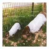 Oro&Ashley、今度Buono!も一緒にクンクンするからねぇ。「イタグレ&ワイマラナー」