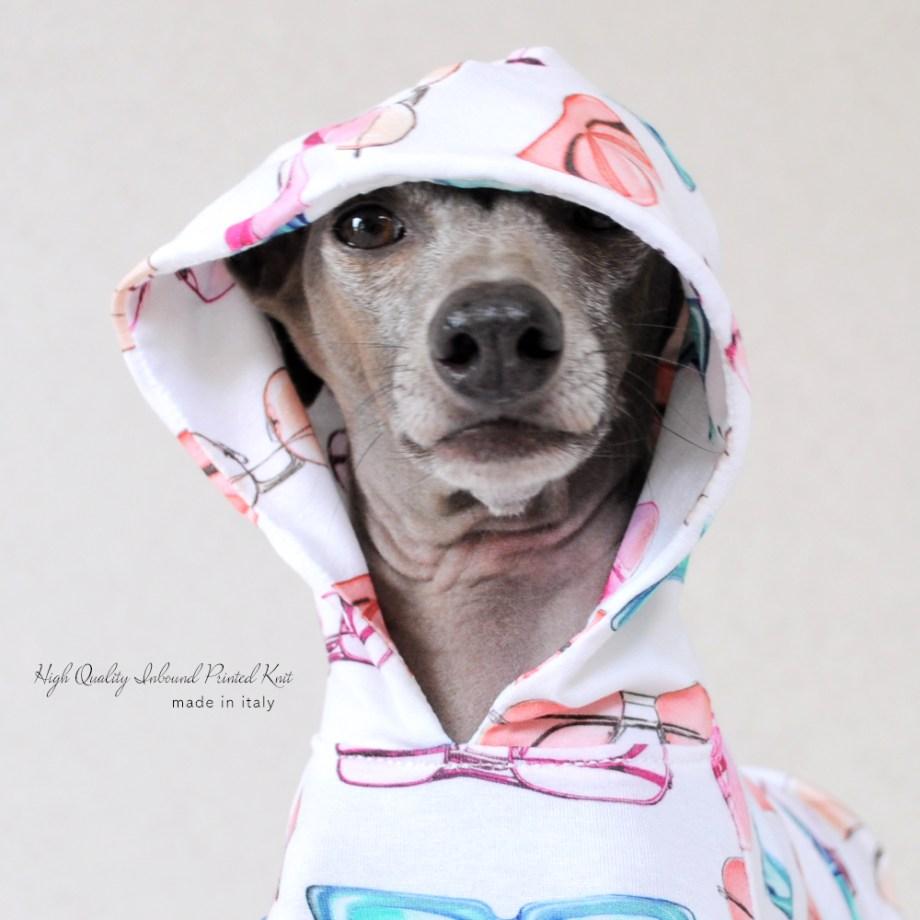 「新作犬服」可愛くポップに過ごす夏♪「上質なイタリア製舶来プリントニット」