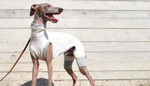 「我が家のイタグレBuono!には持っていなかったタイプで製作してみました!」2017年秋の犬服|やさしく、やわらかなカラーネップ|選べる4タイプ