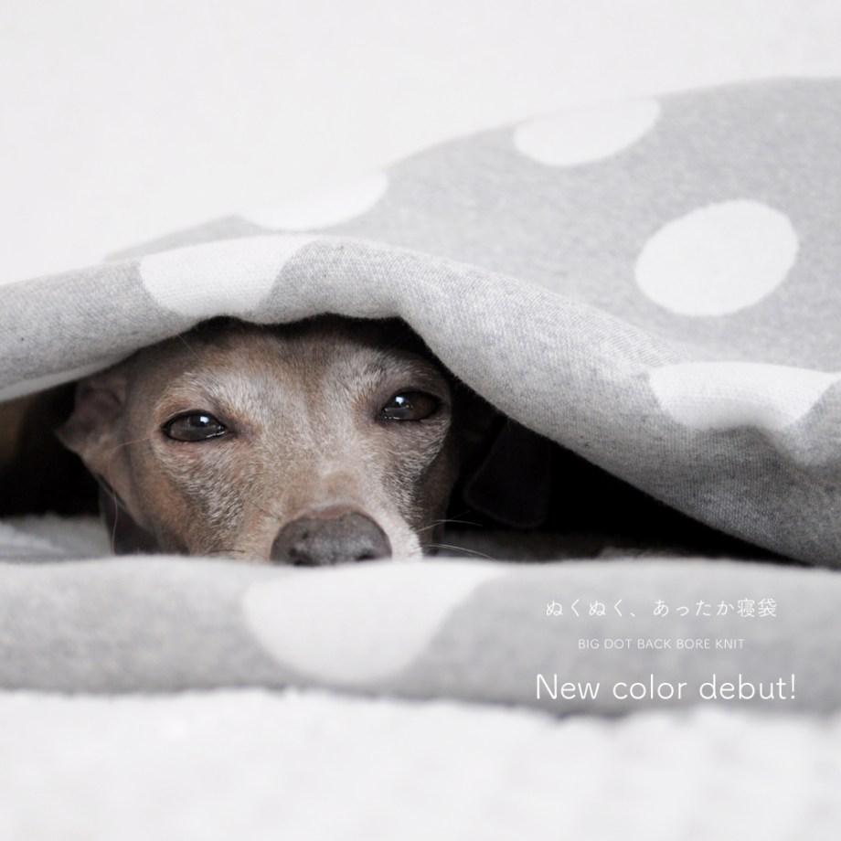 「新色追加しました」ぬくぬく、あったか寝袋「もこもこ素材で毛布のような暖かさ」|ドット裏ボアニット生地