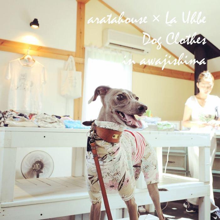 犬服屋の始め方:お店をしながら愛犬と一緒に暮らすお手伝いをします