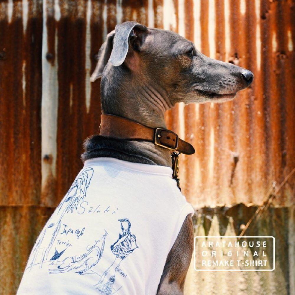 Tシャツなどを犬服にリメイクする際は商標侵害・パブリシティ権侵害の可能性をご確認ください