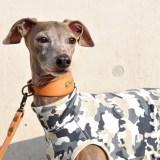 犬服|Friendly Camouflage|日本製天竺迷彩|選べる4タイプ