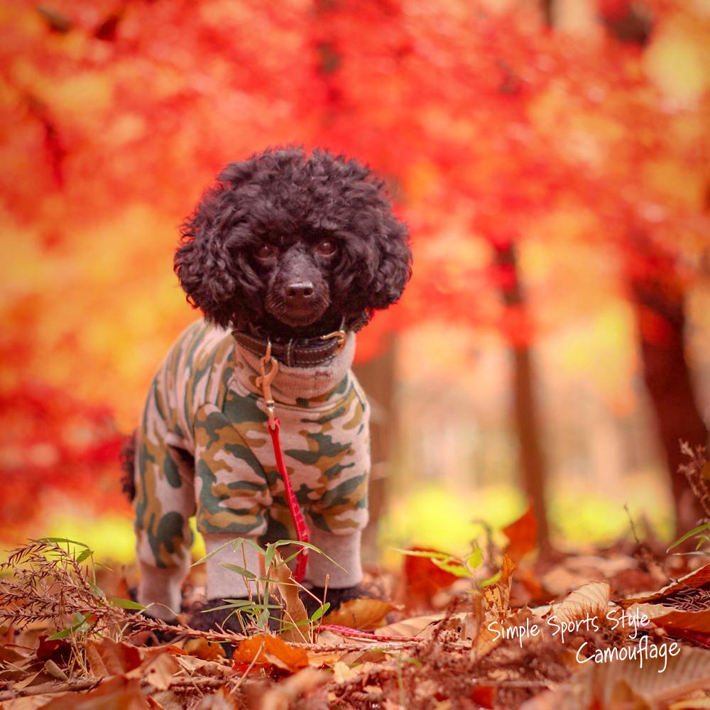 イタグレ服 ミニピン服 ウィペット服 チャイクレ服 サルーキ服 犬服 Simple Sports Style Camouflage(迷彩) 裏毛パイルプリント 選べる4タイプ×3カラー(blue&white/green&gray/brown&gray)