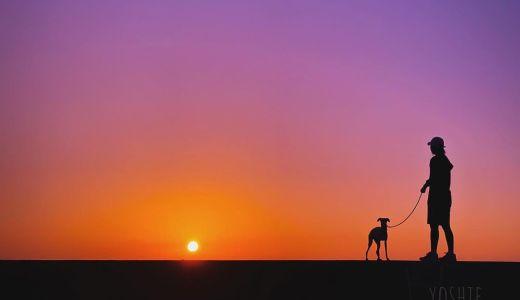 淡路島の夕焼けあそび。