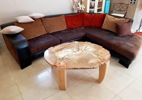 table bois petrifie