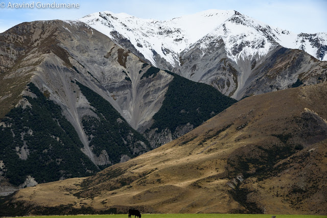 New Zealand day 9: Arthur's pass