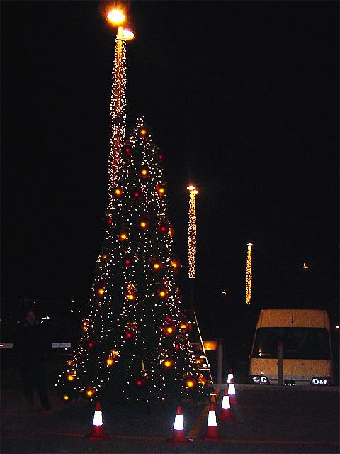 rboles Navidad Ext  BM  rboles de Navidad