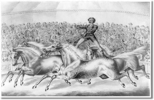 circus-performer-riding-two-horses-at-once