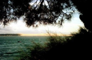 eau-et-dune-copie-1.jpg