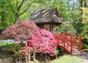 Jardin_japonais_dans_le_park_de_Clingendael.jpg